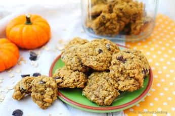 Soft Batch Pumpkin Oatmeal Chocolate Chip Cookies