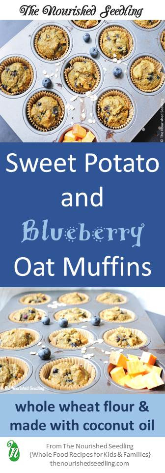 sweeet potato and blueberry oat muffins
