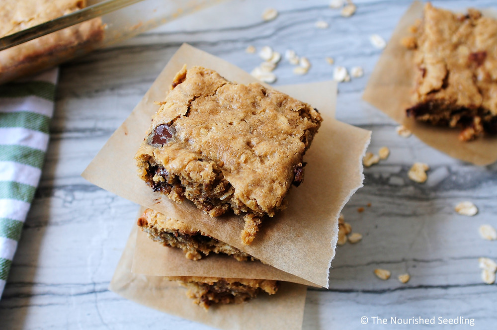 gluten-free-healthy-peanut-butter-bars