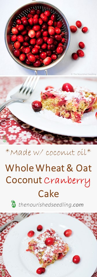 healthy-coconut-cranberry-cake