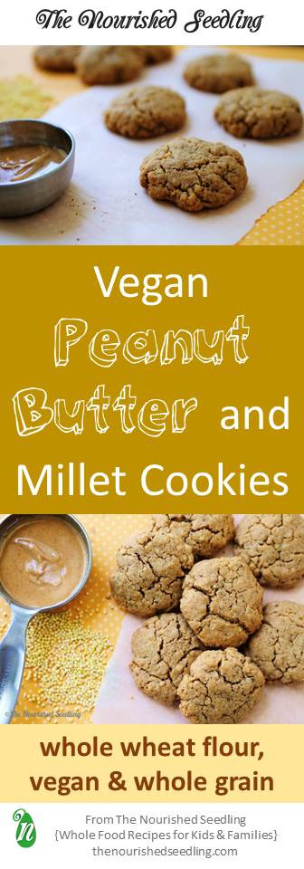 vegan peanut butter cookies