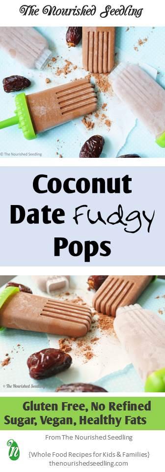 healthy-vegan-coconut-pops