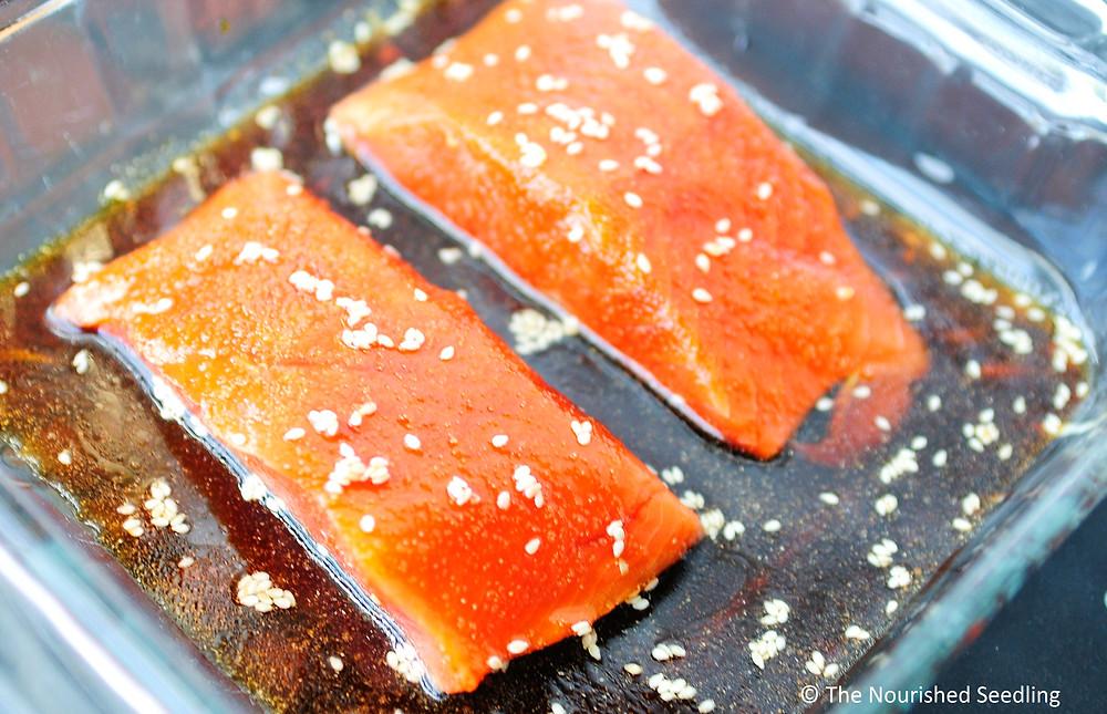 teriyaki-salmon-recipes