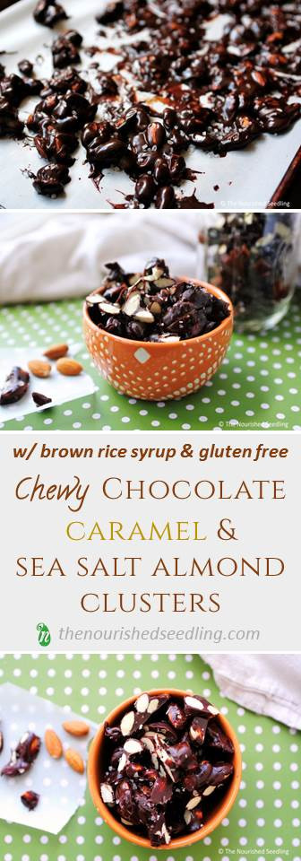 chewy-chocolate-nut-clusters