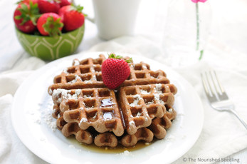 Gluten Free Teff and Oatmeal Waffles