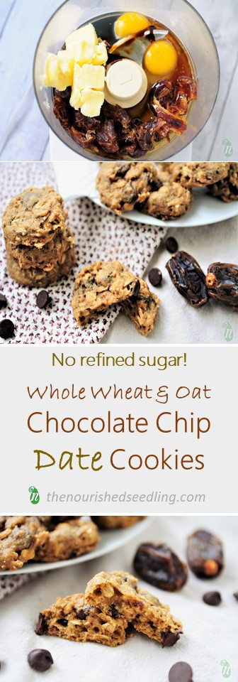 cookies-with-no-refined-sugar-recipe