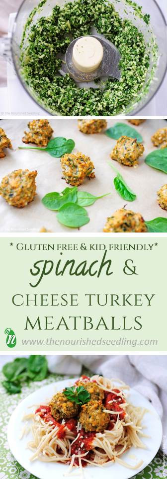 healthy-gluten-free-turkey-meatballs
