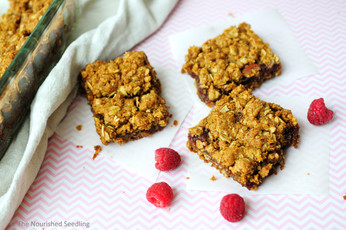Oatmeal and Raspberry Jam Bars