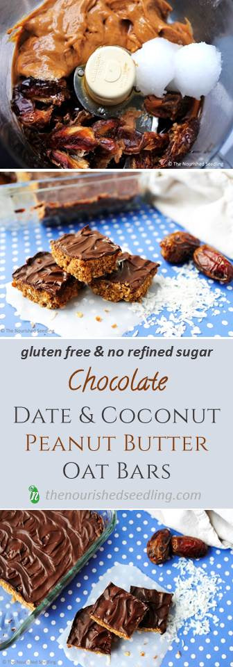 healthy-chocolate-and-peanut-butter-oat-bars
