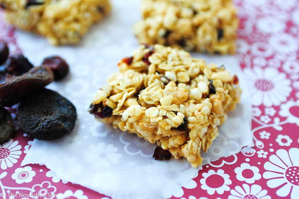dried fruit and honey homemade granola bars