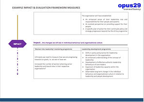 Impact and Evaluation framework examples