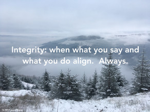 Guiding principles #3 - Integrity