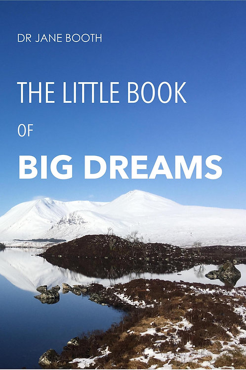 The little book of big dreams