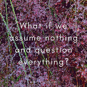 Assume nothing - 100820.jpg