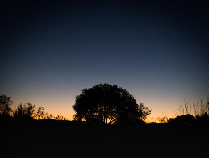 Goodnight, Sun