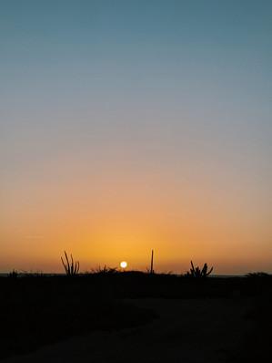 Arashi Sunset
