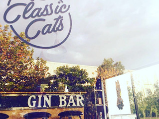 Gin tasting for you and your friends