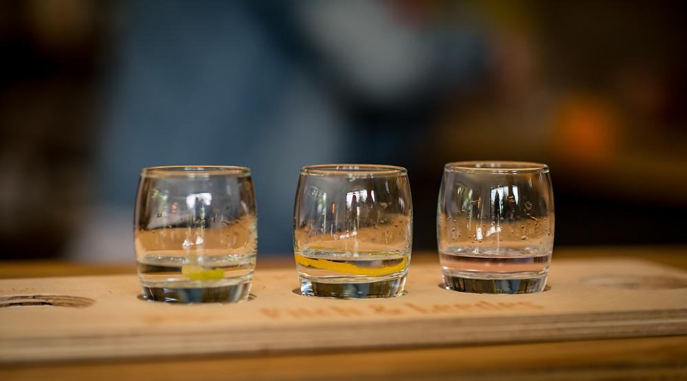 craft gin tasting stellenbosch