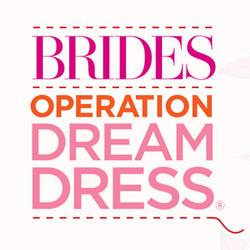BRIDES DREAM DRESS