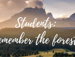 Students: remember the forest