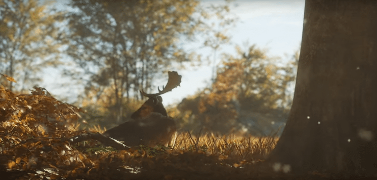 theHunter Call of the Wild - Animal AI Video Game Designer Article