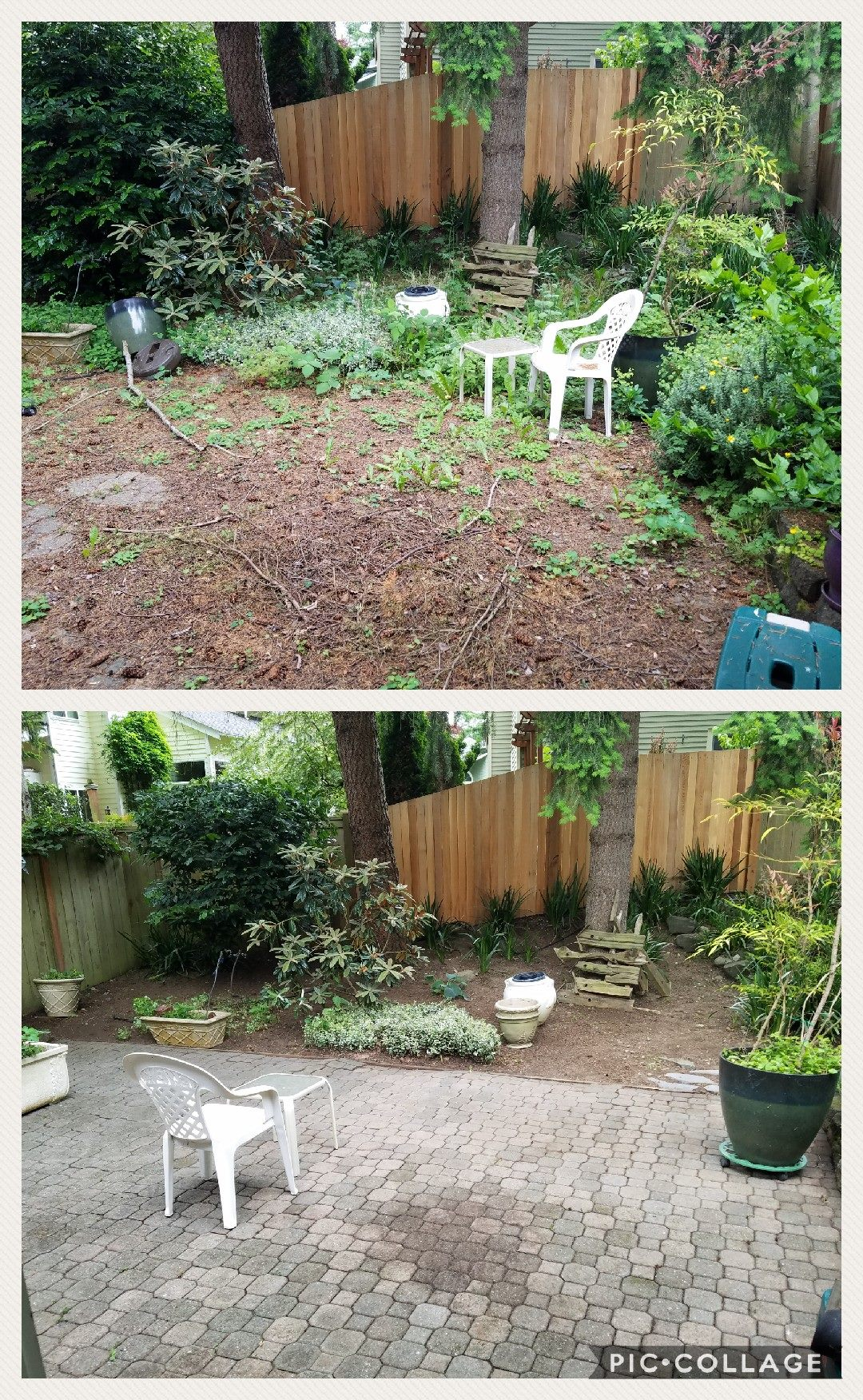 Before and after clean up