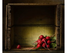 radishes in a crate.jpg