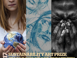 Sustainability art Prize 2017