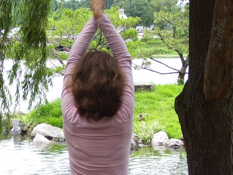 SHIN SOMATICS MOVING WAY                                                   YOGA TEACHER TRAINING
