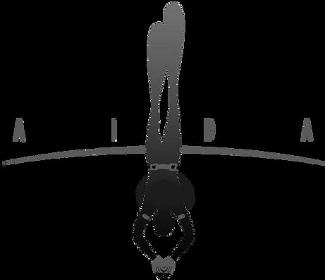 Aida Freediving Instructor