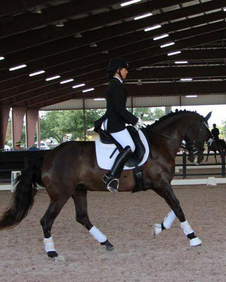 Conqusitador daughter Hypatia Bella dressage