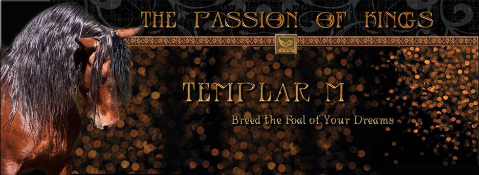 Templar-hdrw.jpg