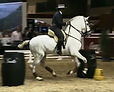 SICAB working equitation.jpg