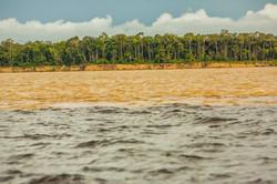 Manaus - rencontre des eaux