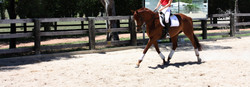 Need all weather riding surfaces?
