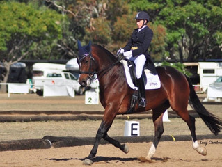 Young Dressage Championships
