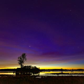 Dreamy Night At Sherburne