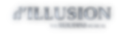 d'ILLUSION new logo (shiny).png
