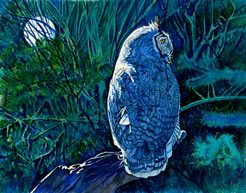 Night Hunter-Great Horned Owl-final colo