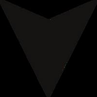 black arrow.png