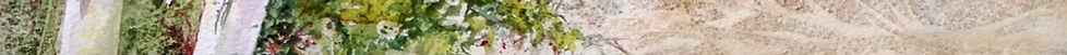 Winter Birches footer1.jpg