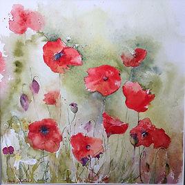 Field Poppies.JPG