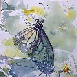 Butterfly Hunt, Penang.JPG