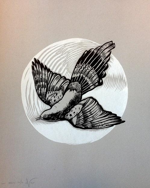 """The Breeze"" by Peter-John de Villiers - AP"