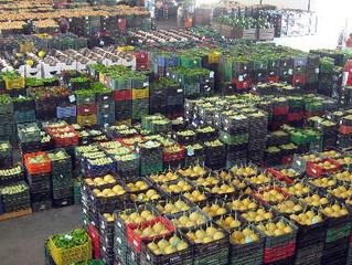 Mercado Montilla confía en Texla Control y en la solución ERP Agro de Hispatec
