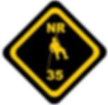 NR 35.jpg