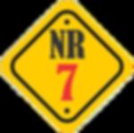 NR 07.png