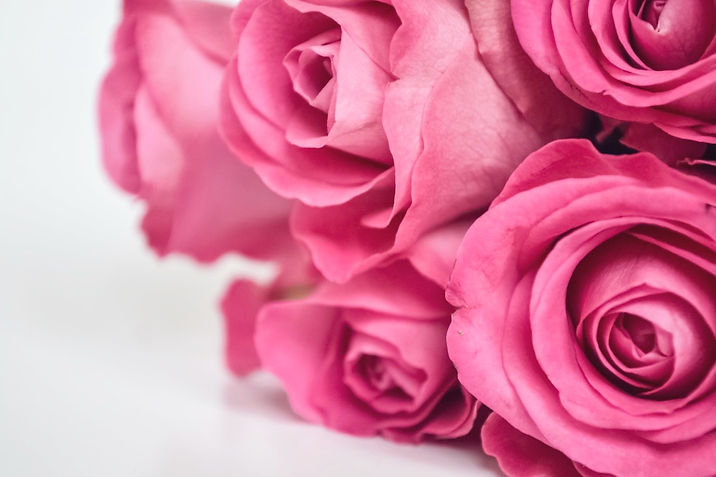 pink-roses-79P2L5M_edited.jpg