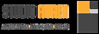 SA_logo completa.png