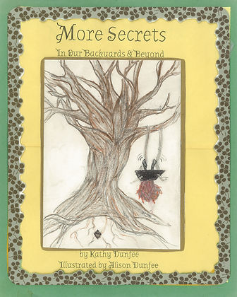 More Secrets Cover Page.jpg